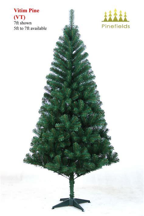 vermont pine xmas trees china tree vitim pine vt china trees trees