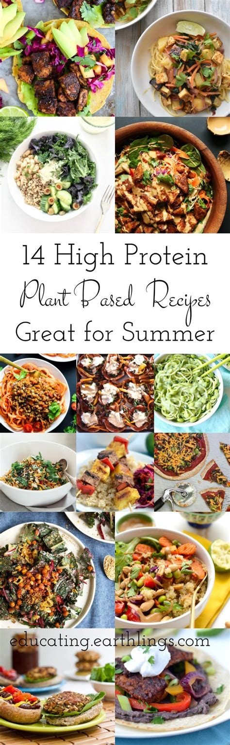 protein for vegetarians 25 best protein sources for vegetarians ideas on
