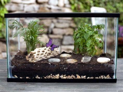 fast terrarium instructions put   mini garden