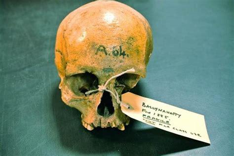 the celtic curse newgrange books researchers reveal how a celtic curse fell upon the