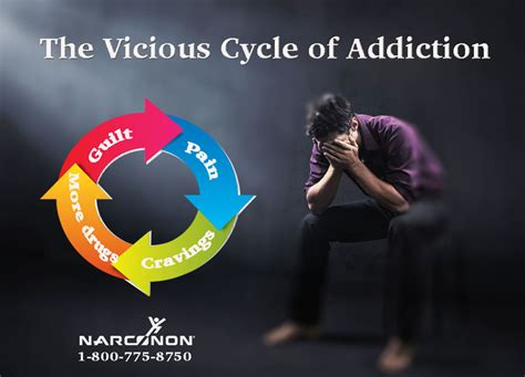 the addict the vicious cycle of addiction narconon addiction and