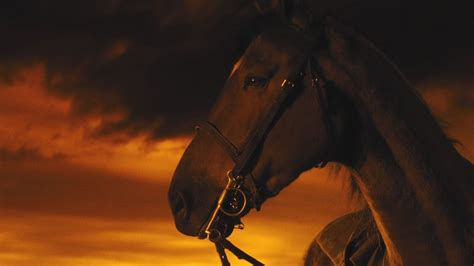 war horse full    hd bluray