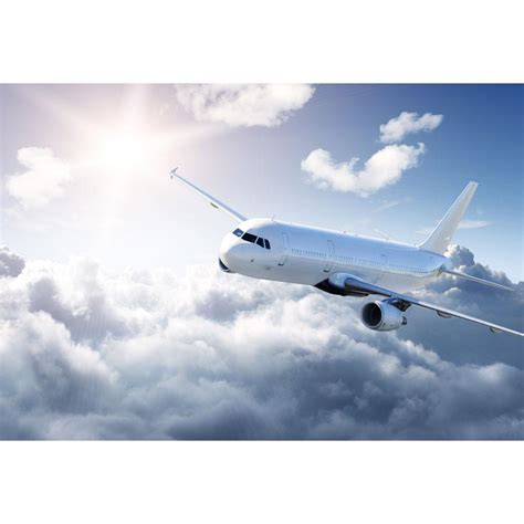 Airplane Wall Mural airplane in the sky wall mural majestic wall art