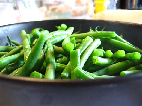 can dogs eat green beans 5 tasty thanksgiving foods your pet can eat