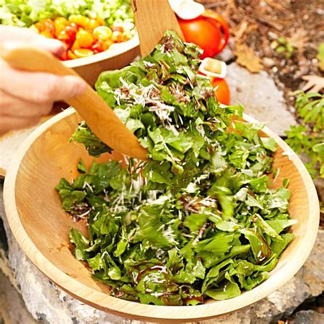Simple Side Salad With Herbs Chagne Vinaigrette by Herb Arugula Salad With Balsamic Vinaigrette Recipe