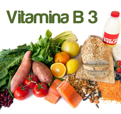 alimento b foods containing vitamin b3 properties and benefits