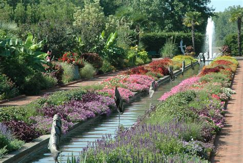 Daniel Stowe Botanical Gardens Explore The Garden Daniel Stowe Botanical Garden