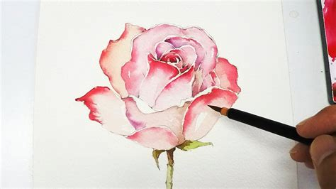 Watercolor Rose Tutorial For Beginners | lvl4 rose painting tutorial doovi