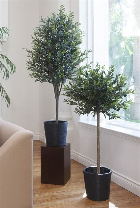 large indoor planters planters awesome large planter large planter large indoor planters olivie