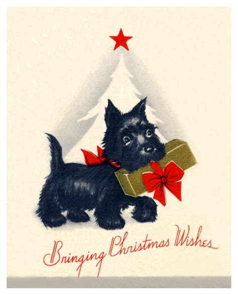 Scottie Cards - scottie cards on terriers scottie dogs and