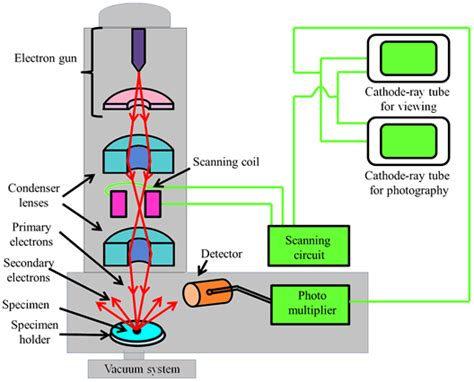 diagram of scanning electron microscope electron microscope lens diagram electron free engine
