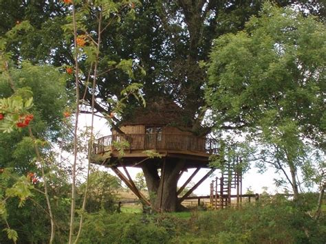 cool tree house cool treehouses from around the world cool things