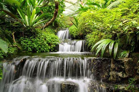 cascata giardino cascata da giardino prezzi idee di design nella vostra casa