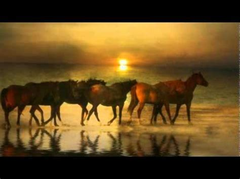 imagenes de niños vaqueros con frases amor salvaje feliz cumplea 241 os vaquero youtube
