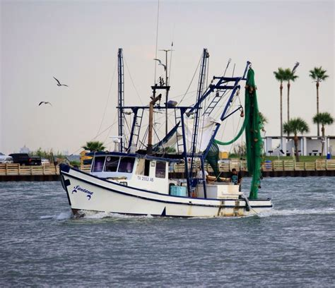 fishing boat jobs galveston shrimpers in galveston bay photos by me pinterest