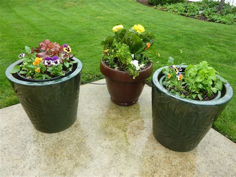 potting mix for container gardening spruce up your garden before memorial day weekend espoma