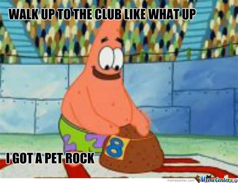 Pet Rock Meme - pet rock by scribbler meme center