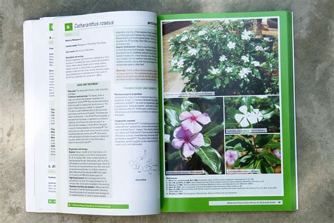 plant layout and design book medicinal plants of east africaaksent aksent