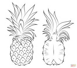 pineapple coloring page pineapple and cross section coloring page free printable