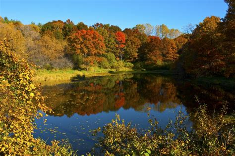 of minnesota colors where to see fall color in minneapolis and st paul