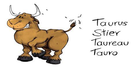 11 dezember sternzeichen monatshoroskop juli stier