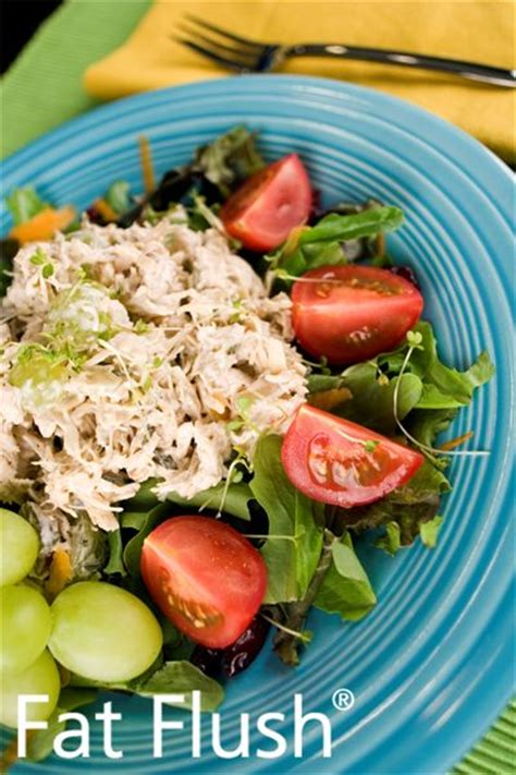 Detox Chicken Salad Recipe by 1000 Ideas About Flush Diet On Flush