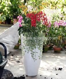 Large White Garden Pots Ceramic White Garden Large Pot Buy Large Pot Garden