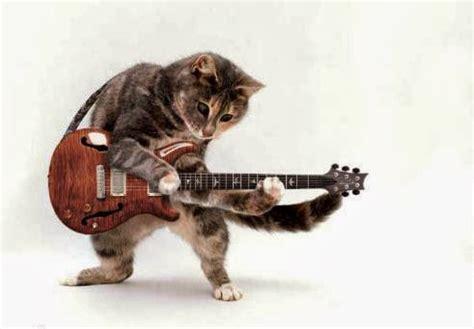 Gitar Animal Animalz Animals Guitar New