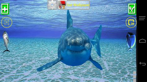 imagenes que se mueven al tocarlas angry shark pet cracks screen android apps on google play