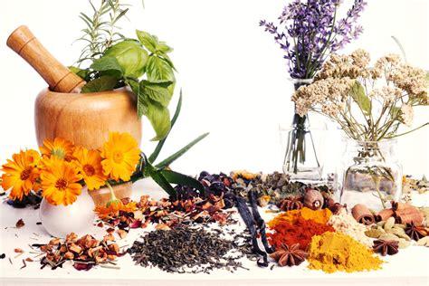 traditional medicine traditional herbal medicine