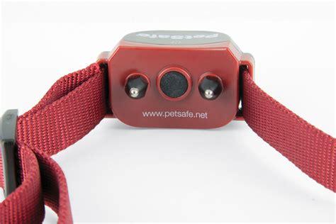 petsafe stubborn collar petsafe stubborn stay play wireless fence receiver collar huntemup