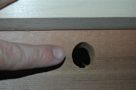 top bar hive dimensions file an entry hole for a top bar bee hive may2012 jpg