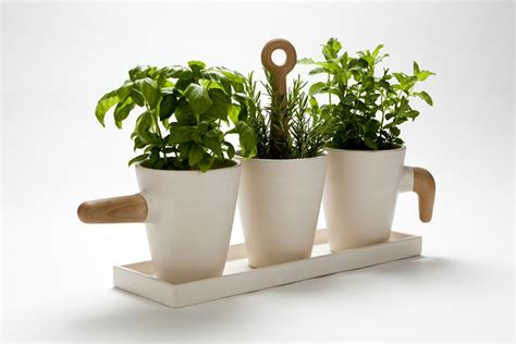 Kitchen Herb Pots | ceramic herb pot by cristina toledo gessato blog