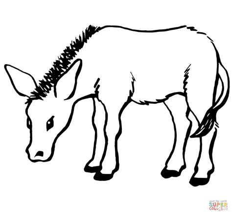 little donkey coloring page supercoloring com
