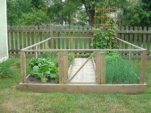 Backyard Fruit And Vegetable Garden My 2012 Garden Small And Mighty Momma