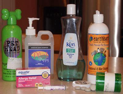 allergy medicine for dogs common skin allergies
