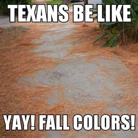 Texas Weather Meme - 224 best images about texas weather gotta luv it on