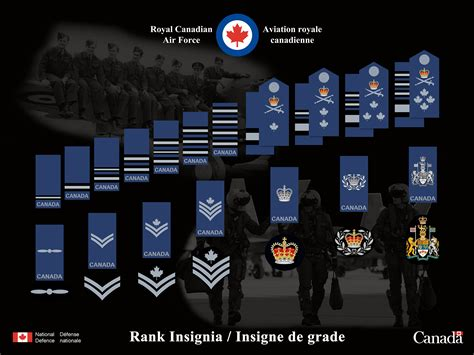 canadian military rank structure for the air force navy and army new canadian forces ranks and insignias cheat sheet help