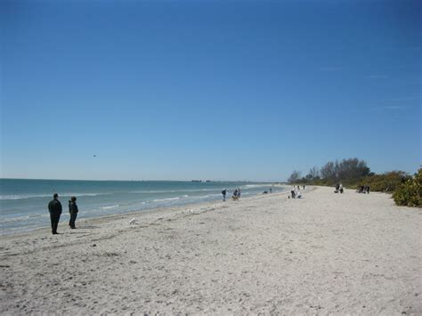 florida beaches that allow dogs top 10 friendly beaches for 2012
