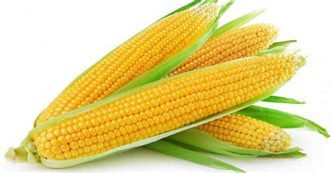 lebih sehat bikin jagung beku sendiri yuk okezone lifestyle
