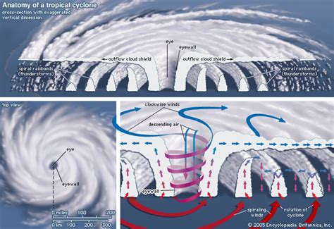 Tropical Cyclone Cross Section by Tropical Cyclone Meteorology Britannica
