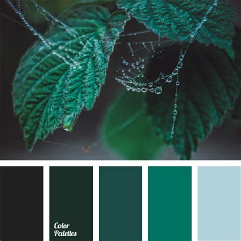 marsh colour color palette ideas