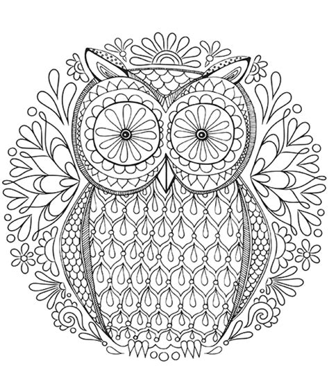 owl zentangle coloring pages