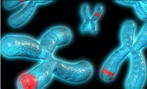 Will You A With Bad Genes by Bad Genes May Not You Ll Get A Disease Genetic