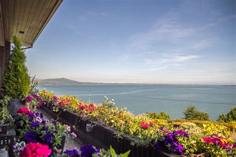 carlingford viewpoint b b wedding accommodation carlingford b b viewpoint guest house
