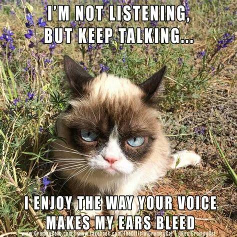 My Ears Are Bleeding Meme - you make my ears bleed grumpy cat grumpy cat