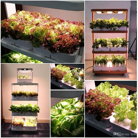 hhome ydroponic garden google search indoor farming