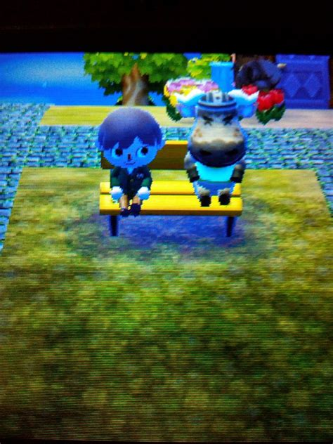 what is benching someone finally the town bench is used by someone else xdd animalcrossing