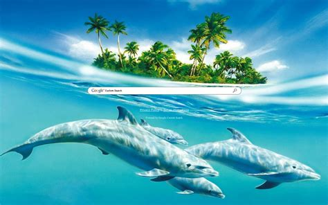 google images dolphins dolphins google theme