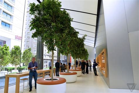 Apple Just Revealed The Future Of Its Retail Stores The Backyard Store